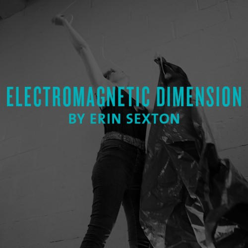 electromagnetic dimension by erin sexton