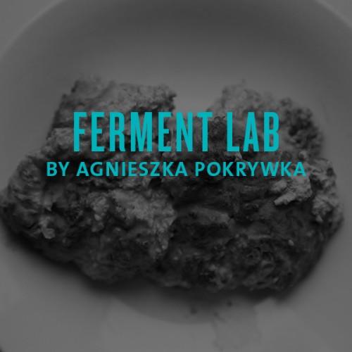 ferment lab by agnieszka pokrywka